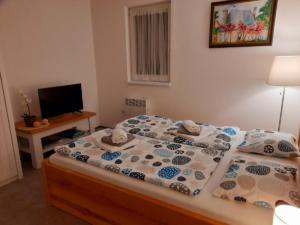 apartman c1 3b